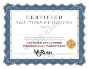 MG RUSH 452A Online Professional Facilitation Training