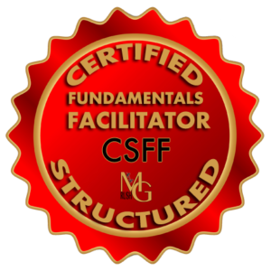 Facilitation Fundamentals, Facilitation Skills